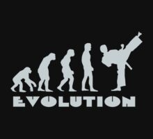 Evolution Of Martial Arts by best-designs