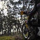 Enduro Motocross #2 by Luke Donegan