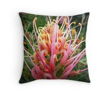 Grevillea Flower from young tree Throw Pillow
