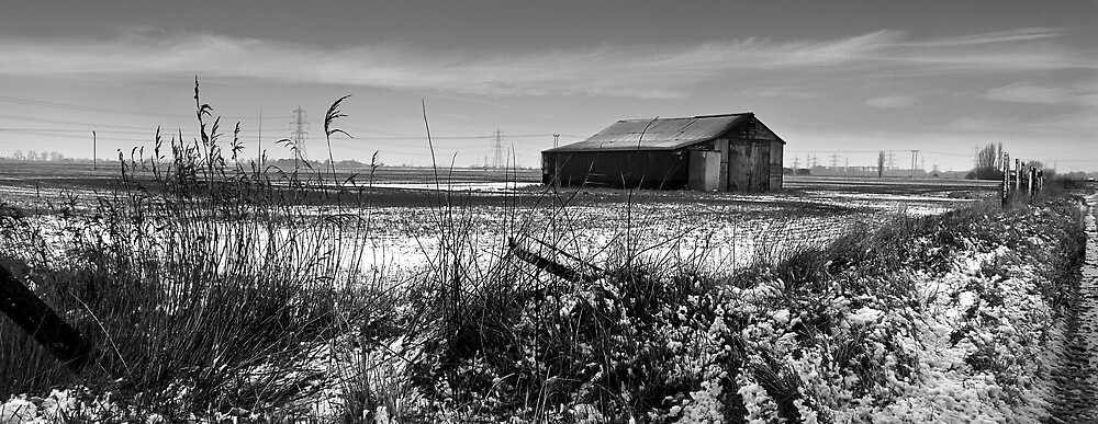 barn by paullycoops