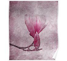 primavera Poster