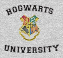 Hogwarts University by tappers24