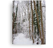 Narnia... Canvas Print