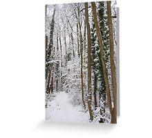 Narnia... Greeting Card