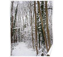 Narnia... Poster