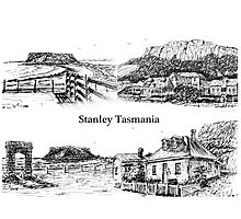 Four views of Stanley by Ian (Ruckrova) Shiel 2015 Photographic Print