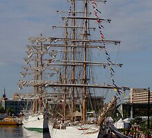 Tall Ships In Baltimore - 1 by Rob Diffenderfer