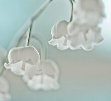 Lily of the valley by Henrietta Hassinen