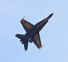 Baltimore Blue Angels 1 by Rob Diffenderfer