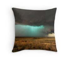 Jewel of the Plains Throw Pillow