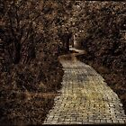 *Pathway by GoldenRectangle