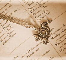 The Magic Dragon by J Bonanno