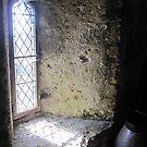 Through the Window by HeatWave