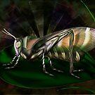 Bug by Cornelia Mladenova