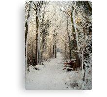 A passage through Narnia. Canvas Print