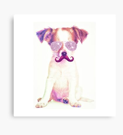 Funny Chihuahua purple Mustache and glasses  Canvas Print