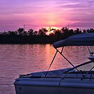Purple Hues by Sandra Lee Woods