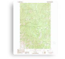 USGS Topo Map Washington State WA Loup Loup Summit 242080 1989 24000 Metal Print