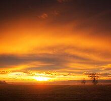 Goldeneye by realityDream