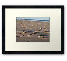 Lumps and Bumps (light and shade) Framed Print