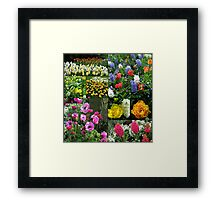 Keukenhof Collage featuring Anemones and Hyacinths Framed Print