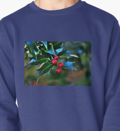 Holly Fantasy Pullover