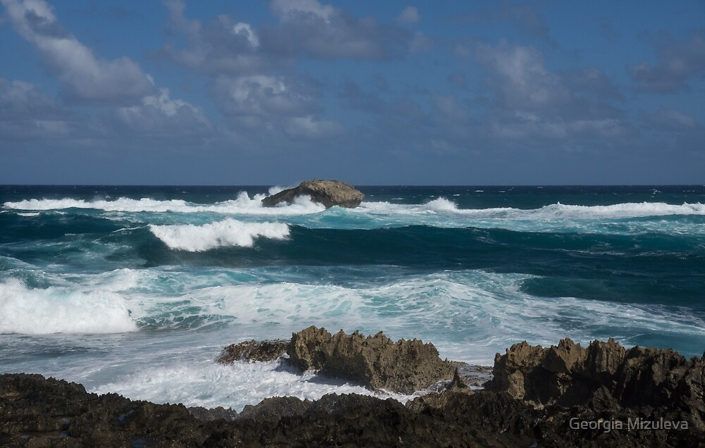 Boiling the Ocean at Laie Point, Oahu's North Shore in Hawaii by Georgia Mizuleva