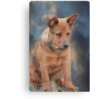 Little Gracie Canvas Print