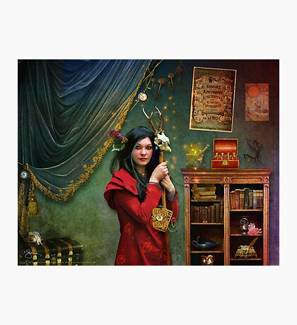 Curious Curator Photographic Print