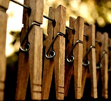 Clothes Pins by jasmith162