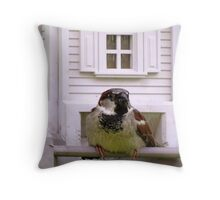 A Bug in the Beak is Worth Two in The Bush Throw Pillow
