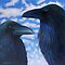 Two Ravens by Brian Commerford