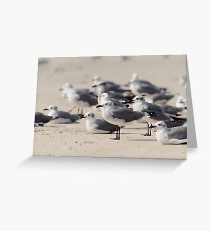 Crowded Beach Greeting Card
