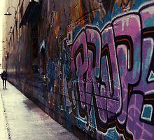 Melbourne laneway of art by Melinda  Ison - Poor