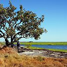 The magic of Arnhem Land - Under the shade of a Coolibah Tree by georgieboy98