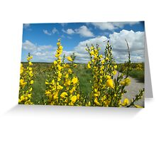 Culloden Battlefield with Flowers Greeting Card