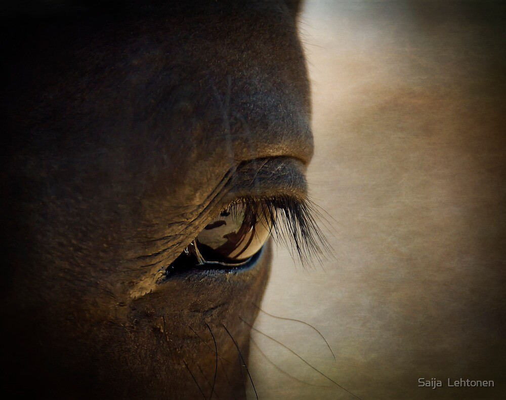 The Eyes are the Window to the Soul  by Saija  Lehtonen