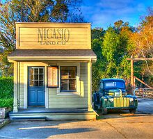 Early morning in Nicasio by Alberta Brown Buller