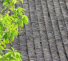 Tiled Roof  by Ethna Gillespie