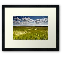Illuminated Breeze Framed Print