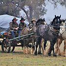 The Wagon in the Rain by julie anne  grattan