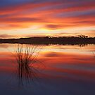 Fire Water - Ocean Grove Victoria by Graeme Buckland
