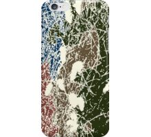 P3031424 iPhone Case/Skin