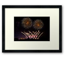 Fire Flowers pt4 Framed Print
