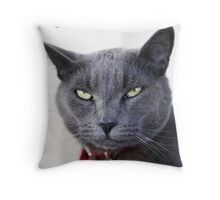 Do not mess with me Throw Pillow