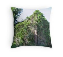 Mother Nature Moving In Throw Pillow