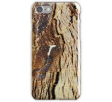 Butterfly wing texture abstract pattern iPhone Case/Skin