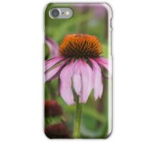 Echinacea purpurea iPhone Case/Skin
