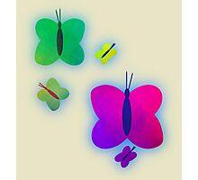 Retro-Bright Butterflies Photographic Print