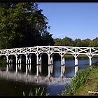 Wooden Bridge at Painshill Park  by Jonathan  Jarman